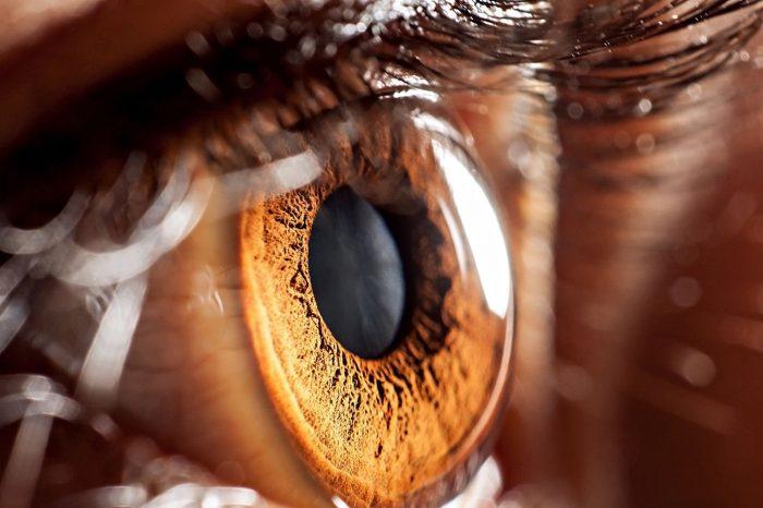 DeepMind, görme bozukluklarını tespit edebiliyor