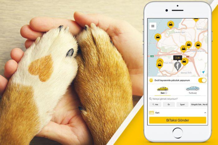 BiTaksi'den Hayvanları Koruma Günü'nde Evcil Hayvan Güncellemesi