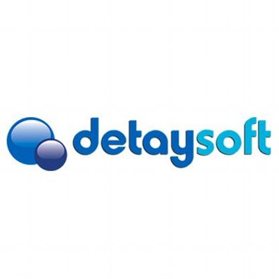 detaysoft logo