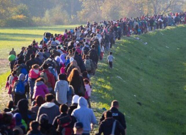 Migathon'a 11 İlden Türk ve Suriyeli Girişimci Adayları Katıldı